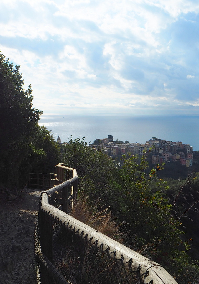 Trail from Vernazza heading in the direction of Corniglia
